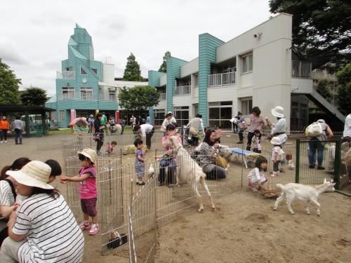 ミニ動物園1