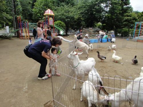 ミニ動物園2